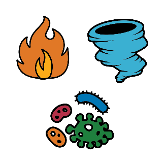 Natural disasters - a fire, cyclone and virus